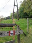 Weg 31 / Kulmweg