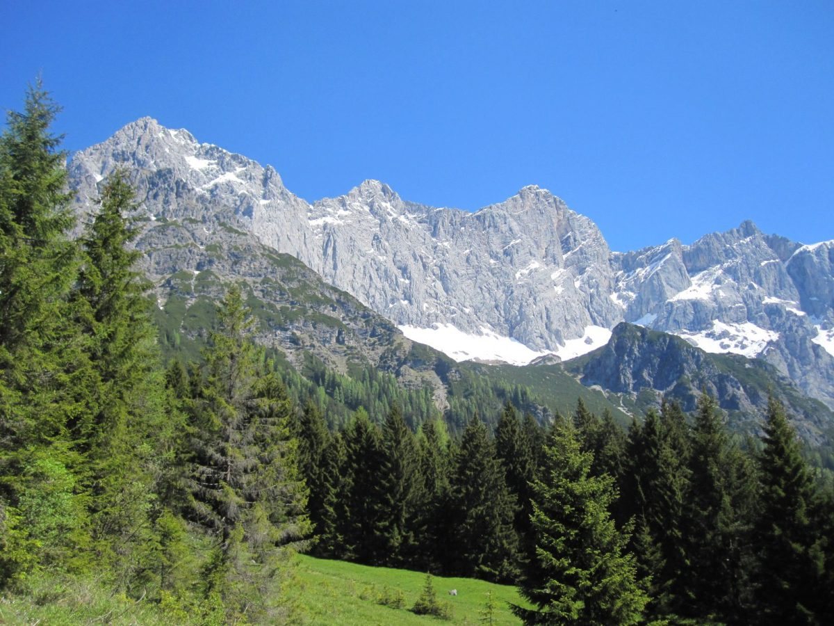 Dreigestirn Torstein-Mitterspitz-Dachstein