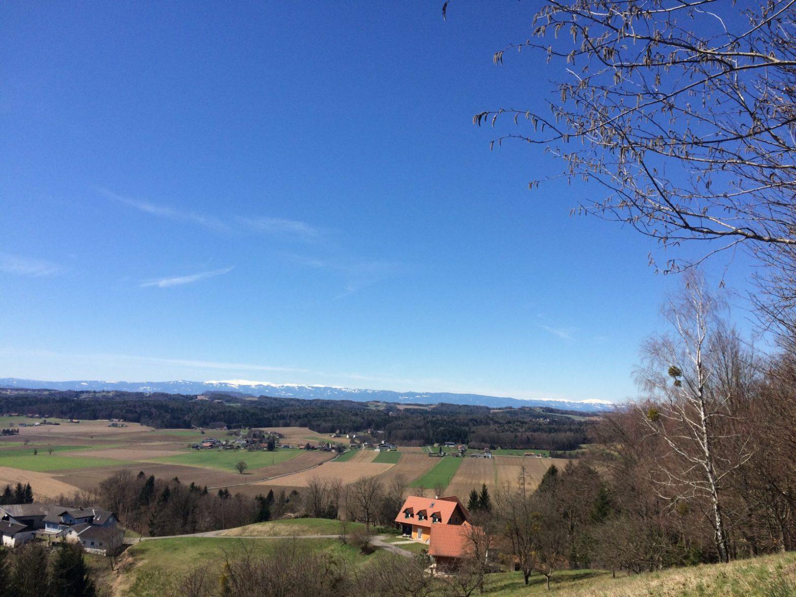 Ausblick Rosenweg